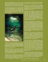 NAUI - Sources I - 2013 Cenotes