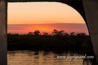Sunset sur la mangrove